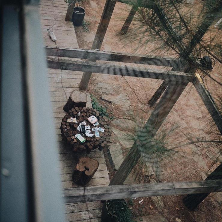 Sân vườn cực gần gũi với thiên nhiên, nơi các bạn có thể thư giãn và đọc sách giữa những tán thông rì rào – Ảnh: sưu tầm
