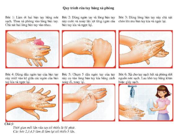 Quy trình rửa tay
