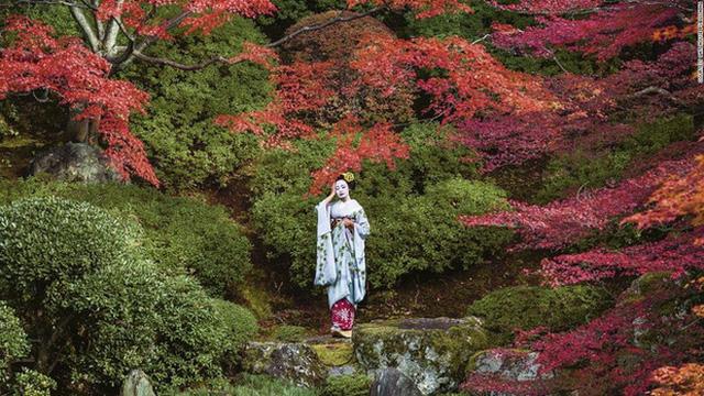 Con đường vào nghề khắc nghiệt của các Geisha tập sự - Ảnh 6.