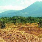 """Một công ty nước ép đổ 12.000 tấn vỏ cam xuống khu bảo tồn thiên nhiên, 19 năm sau, đây là """"hậu quả"""""""