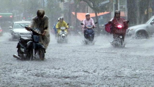 Phát sai lệch bản tin dự báo, cảnh báo thiên tai khí tượng thủy văn bị phạt từ 40 - 50 triệu đồng