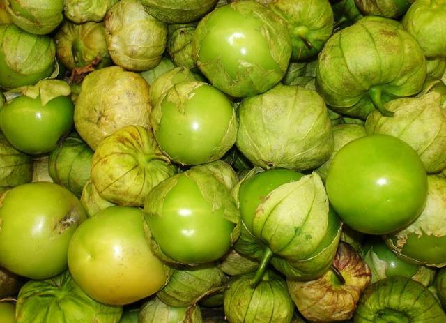 Tầm bóp: Ở Việt Nam chỉ là quả dại, Nhật Bản bán 700.000 đồng/kg - Ảnh 4.