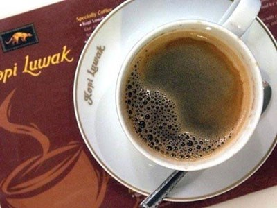 Giá thành của một ly cà phê Chồn trên thế giới dao động từ 30 – 100 USD