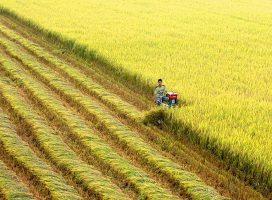 """Doanh nghiệp du lịch, nông nghiệp, kinh tế số chưa hết """"khổ"""" vì rào cản chính sách"""