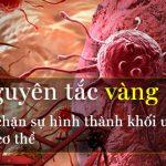 Ai cũng có tế bào ung thư trong người: 3 nguyên tắc vàng chặn đứng sự hình thành khối u