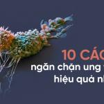 10 chuyên gia đúc kết 10 nguyên tắc 'vàng' phòng tránh ung thư: Ghi nhớ để tự cứu mình