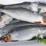 Người Việt Nam may mắn khi thường xuyên được ăn 3 loại cá rẻ mà bổ hơn cả nhân sâm