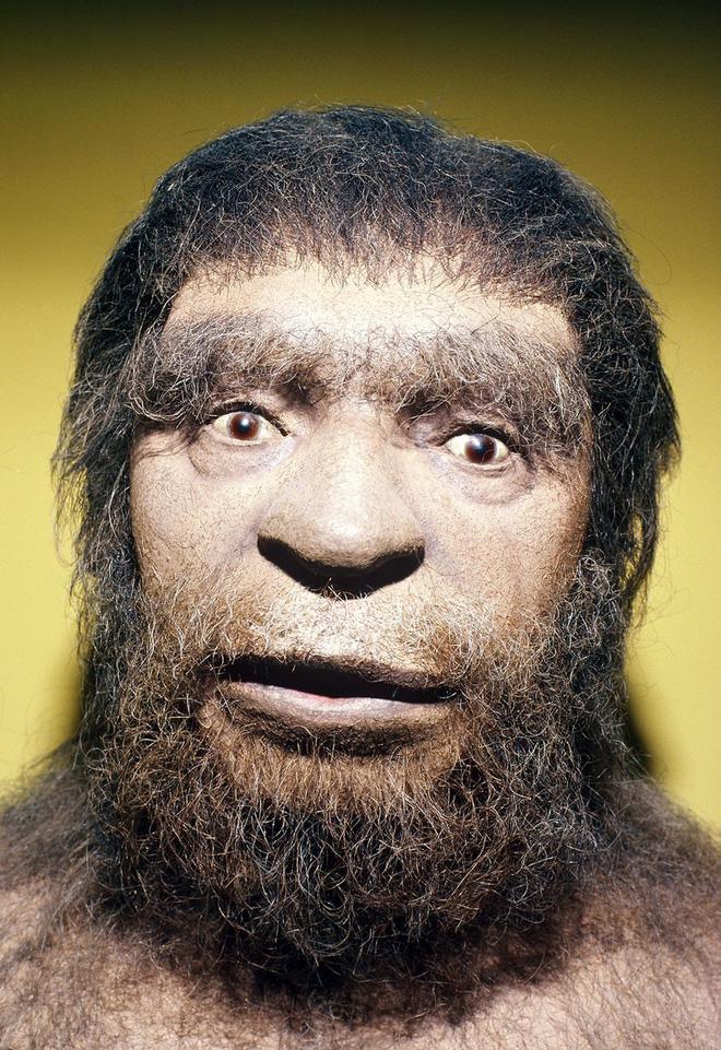 Có thể bạn không tin: Con người tồn tại được đến ngày nay chính là nhờ... cặp lông mày - Ảnh 1.
