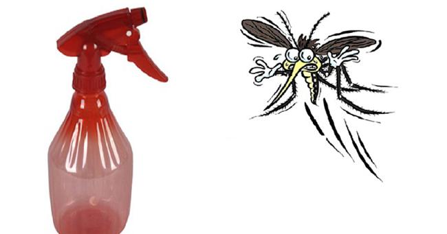 Dạy bạn cách tự chế nước diệt muỗi hiệu quả và có thể dùng cho thai phụ và trẻ nhỏ
