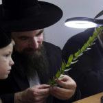 Cậu bé Do Thái và 1 đô la: Câu chuyện về quan điểm làm việc bất kỳ người trẻ Việt chưa quý trọng đồng tiền phải đọc