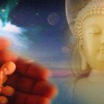 Cầu xin Đức Phật cứu con trai mắc bạo bệnh, người mẹ nhận ra quy luật không thể tránh khỏi